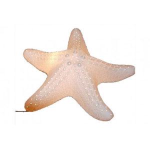 Lampada da tavolo stella marina in porcellana traslucida